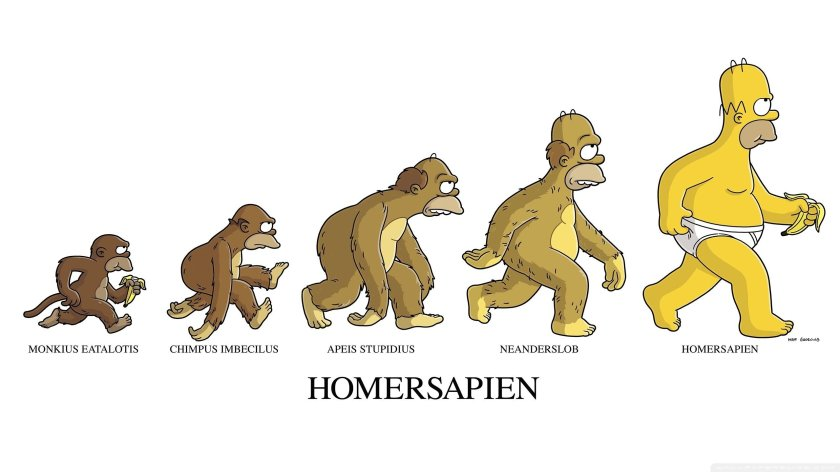 545665-bananas-evolution-funny-homer-simpson-monkeys-the-simpsons